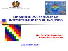 LINEAMIENTOS GENERALES DE INTECULTURALIDAD Y …