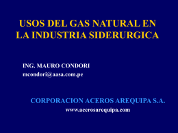 USOS DEL GAS NATURAL EN LA INDUSTRIA SIDERURGICA