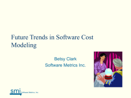 Added Sources of Costs in Maintaining COTS Systems