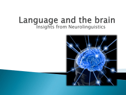 Language and the brain - ICEG250