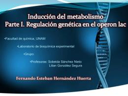 Diapositiva 1 - Bioquimexperimental