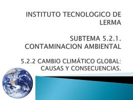 SUBTEMA 5.2.1. CONTAMINACION AMBIENTAL
