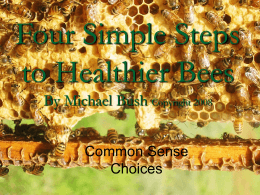 Four Simple Steps to Healthier Bees By Michael Bush