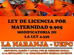 LEY DE LICENCIA POR MATERNIDAD 9.905