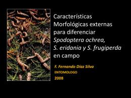 Diapositiva 1 - ::::::::Universidad Nacional Agraria La