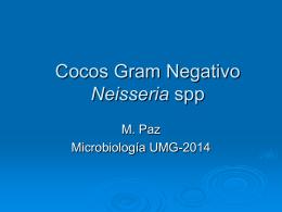 Cocos Gram Negativo Neisseria spp & Moraxella sp
