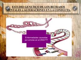 ESTUDIO GENETICO DE LOS RETRASOS MENTALES