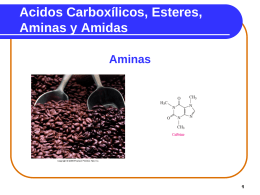 Carboxylic Acids Esters, Amines and Amides