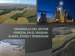 Desarrollo del sector forestal en el Uruguay