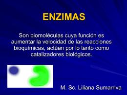 ENZIMAS - .:: Universidad Privada Norbert Wiener