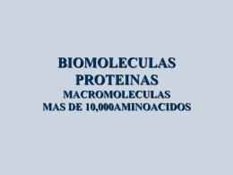 BIOMOLECULAS PROTEINAS MACROMOLECULAS MAS DE …