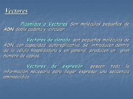 Diapositiva 1 - Instituto de Investigaciones