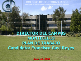 PLAN DE TRABAJO DIRECTOR DEL CAMPUS MONTECILLO …