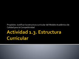 Actividad 1.3. Estructura Curricular