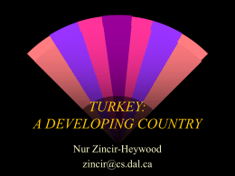 TURKEY: A DEVELOPING COUNTRY
