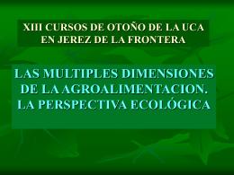 www.uca.es