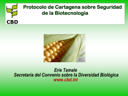 Secretariat of the Convention on Biological Diversity