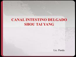 CANAL SANJIAO SHAOYANG DE LA MANO