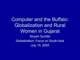 Computer as a Buffalo: Systemic Consequences of
