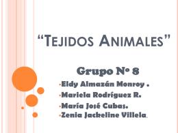 """Tejidos Animales"""""""
