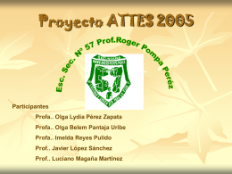 Proyecto ATTES 2005