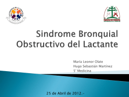 Sindrome Bronquial Obstructivo