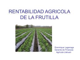 RENTABILIDAD AGRICOLA DE LA FRUTILLA