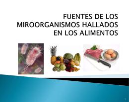 FUENTES DE LOS MIROORGANISMOS HALLADOS EN LOS …