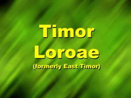 Timor Loroae (East Timor) Information