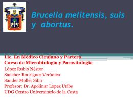 Streptococcus aureus y pneumoniae y enterococcus faecalis.