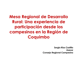 Consejos de Desarrollo Local