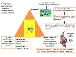 Diapositiva 1 - nuestrasaludpublica