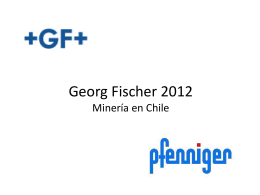 Georg Fischer 2012