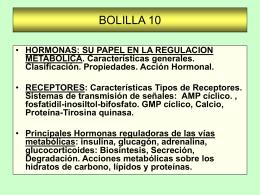 BOLILLA