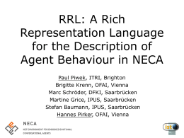 The Rich Representation Language (RRL) in NECA
