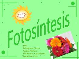 Diapositiva 1 - 605fotosintesis