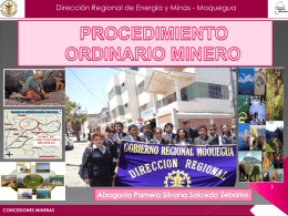 PROCEDIMIENTO ORDINARIO MINERO