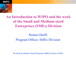 The Small and Medium-Sized Enterprises (SMEs) Division …