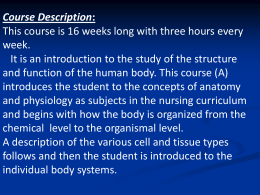 UNIT 1 – INTRODUCTION TO ANATOMY & PHYSIOLOGY