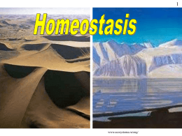 Homeostasis Powerpoint - Biology Teaching & Learning