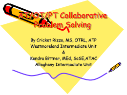 AT-OT-PT Collaborative Problem Solving