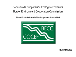 BECC Rapid Assessment Team