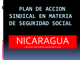 PLAN DE ACCION SINDICAL EN MATERIA DE SEGURIDAD …