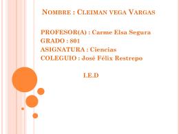 Nombre : Cleiman vega Vargas