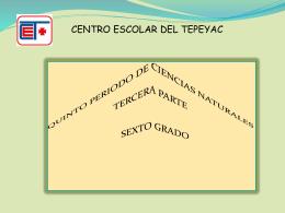 Diapositiva 1 - maelenahernandez