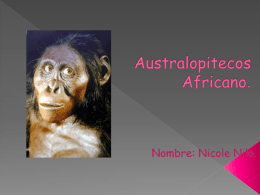Australopitecos Africano.
