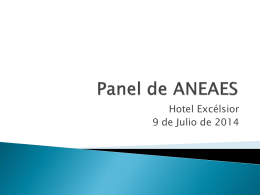 Panel de ANEAES