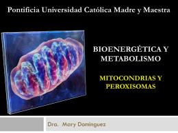 Mitocondria y Peroxisomas Citoesqueleto