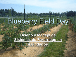 Blue Berry Field Day