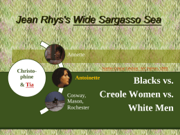 Creole Identities and Racial Relations in Jean Rhys's Wide